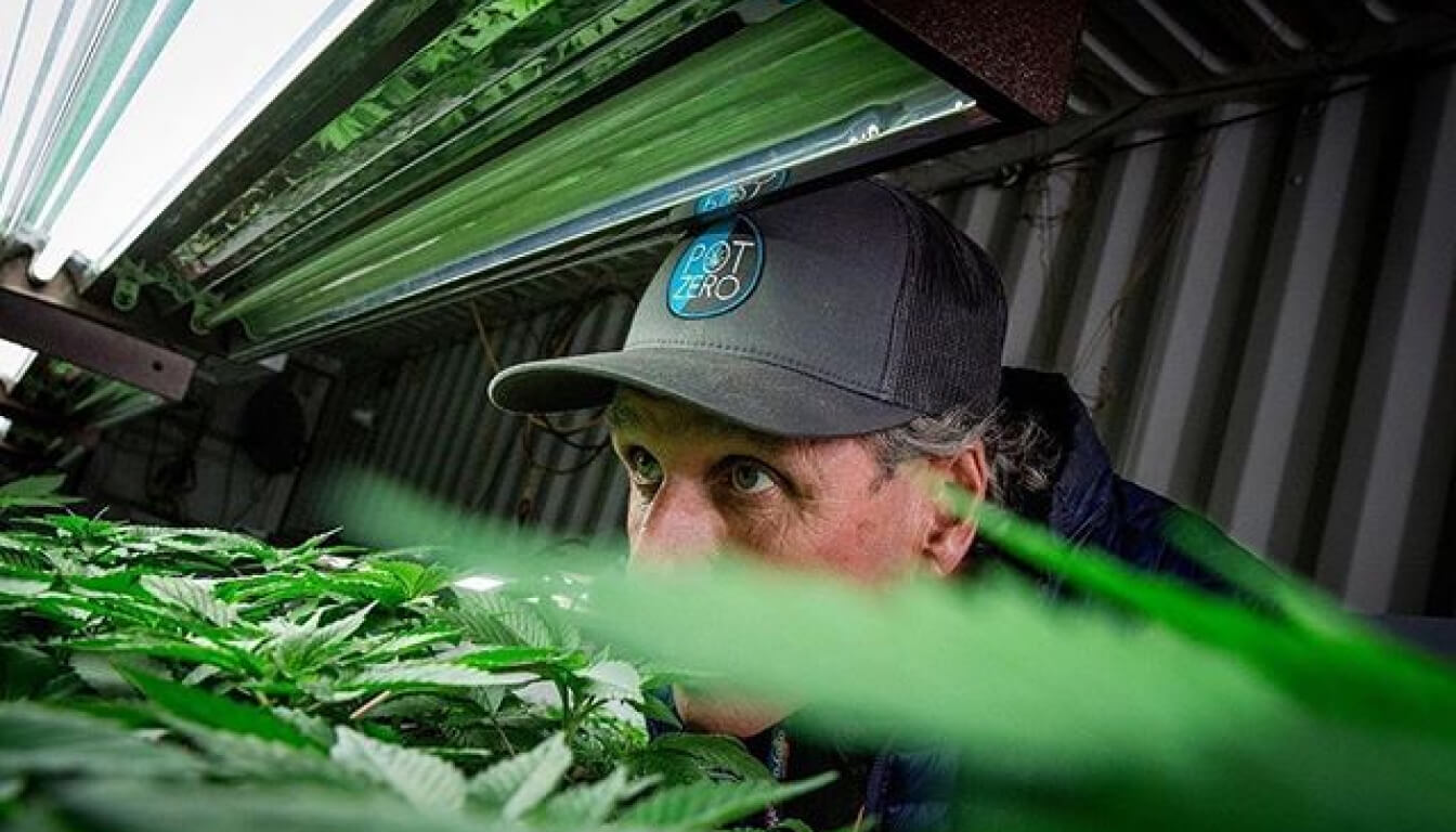 Rob Trotter tending to his cannabis plants. He's wearing a black cap that says 'Pot Zero'.