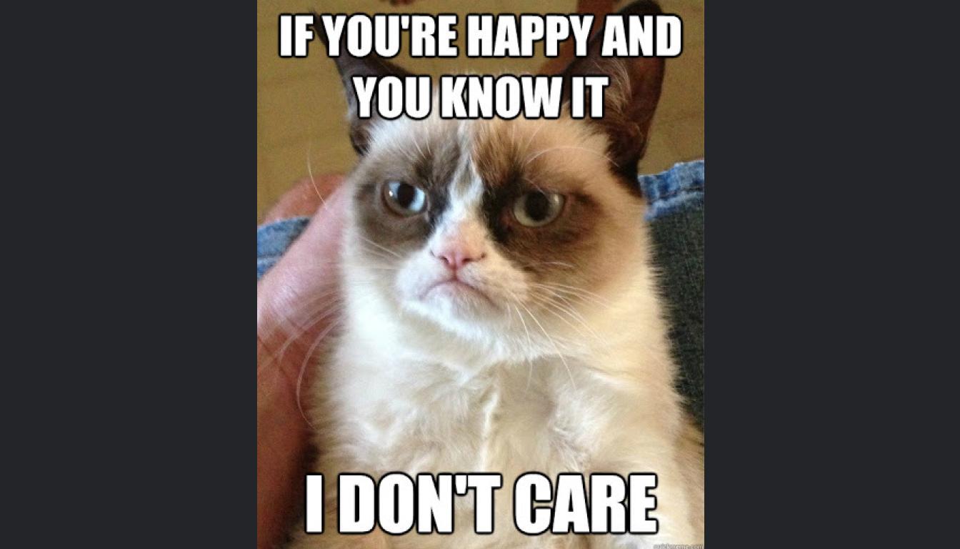 The Grumpy Cat meme described in the episode.