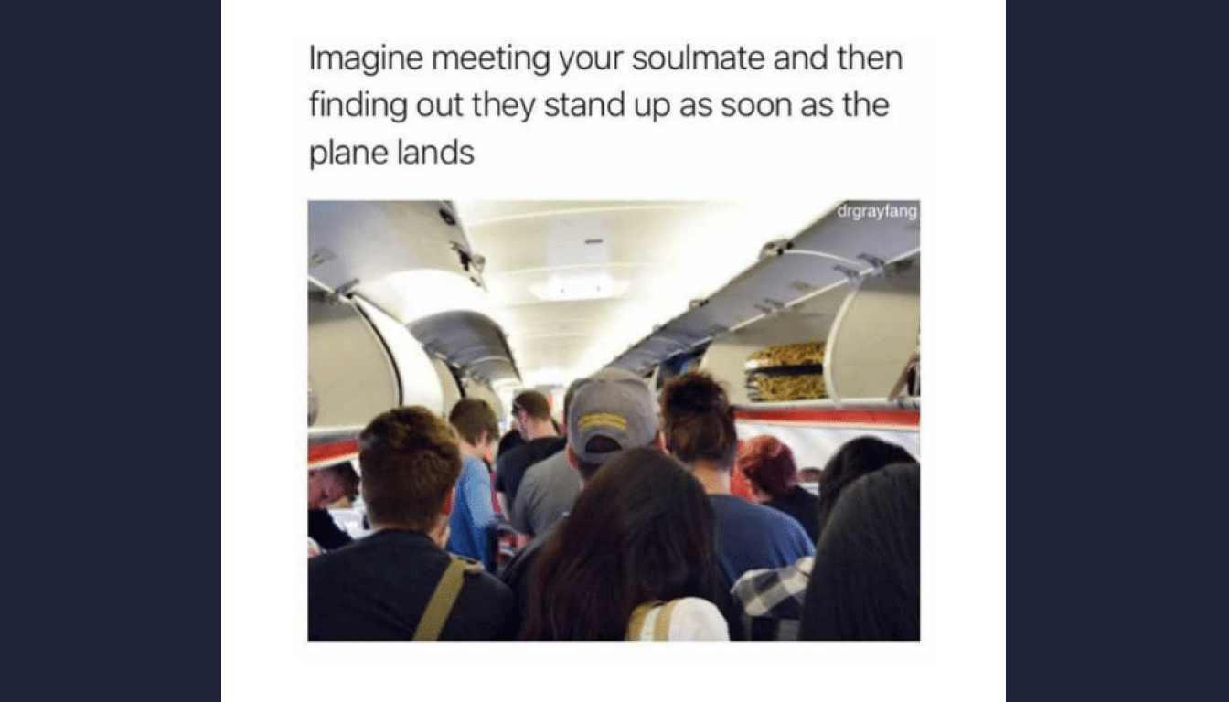 Standing up on plane meme described in the episode.